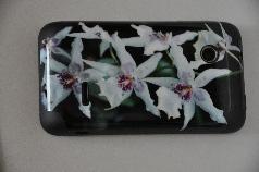 naklejka na telefon skin smartfon Sony ericsson Xperia Tipo